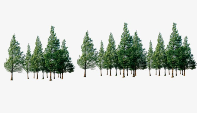 Tree Line Png (105+ images in Collection) Page 1.