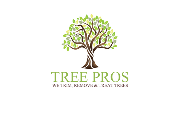 Elegant, Playful, It Company Logo Design for Tree Pros and.