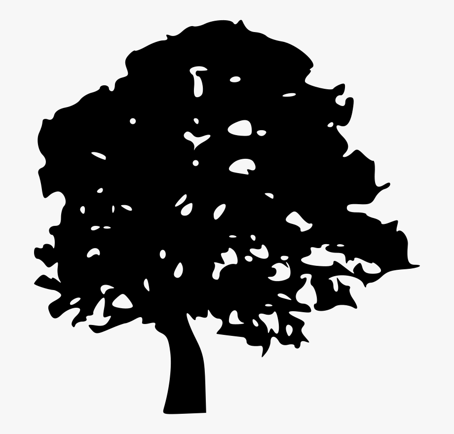 Vector Black And White Forest Trees Clipart Black And.