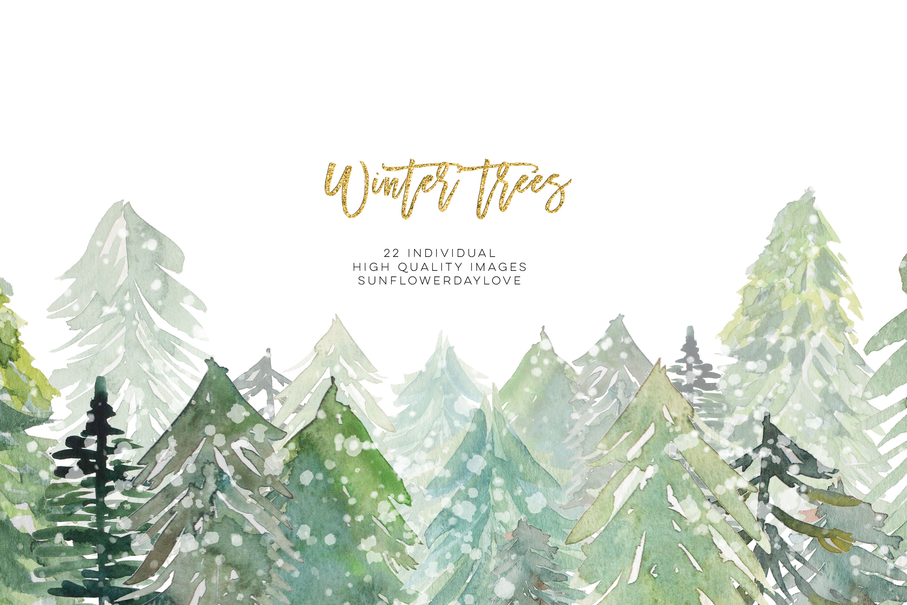 Conifer Forest Trees clipart, Fir Trees Clipart, Watercolor.