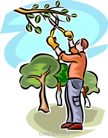 Clipart trees man, Clipart trees man Transparent FREE for.