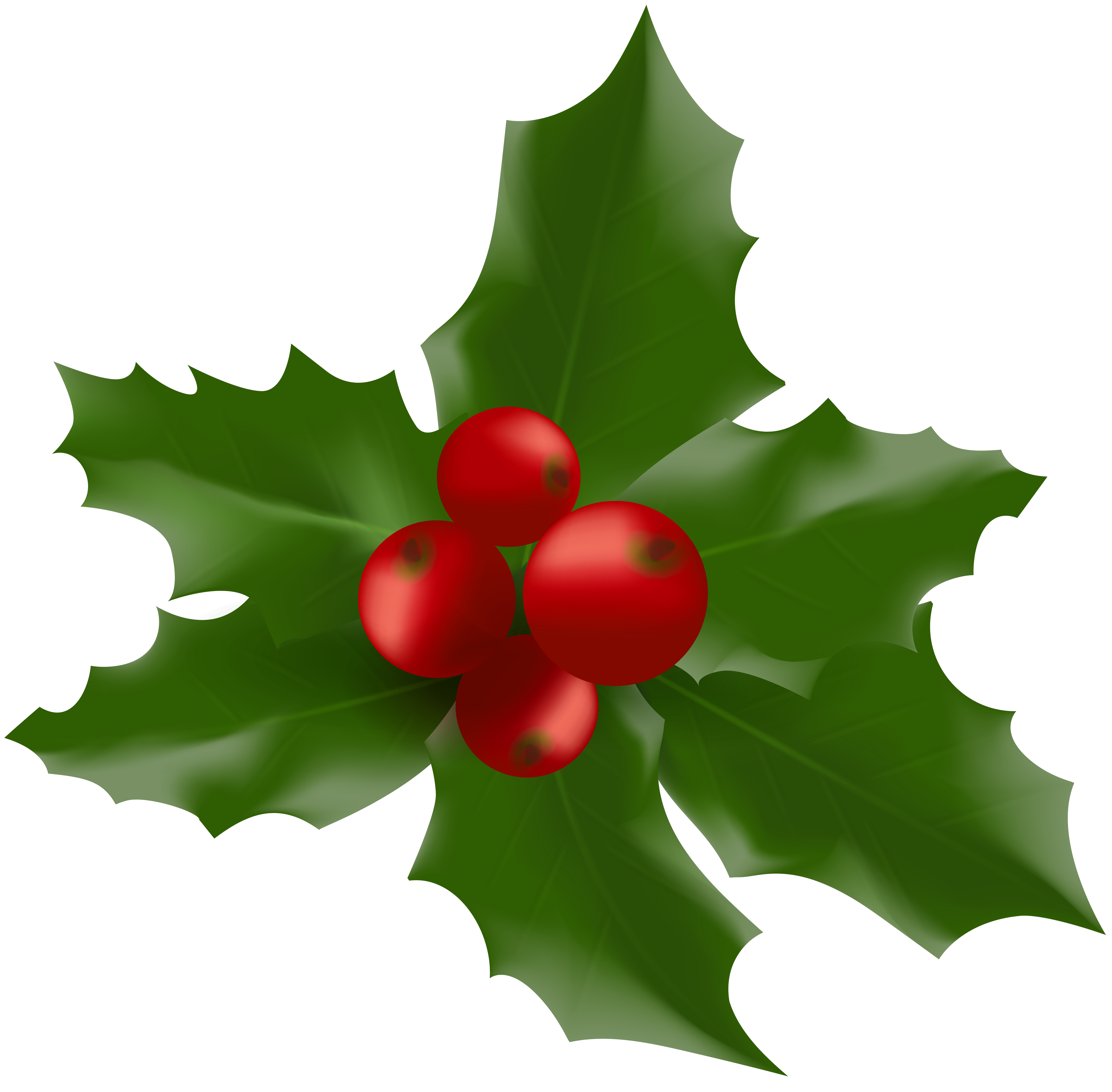 Christmas Mistletoe Large PNG Clipart Image.