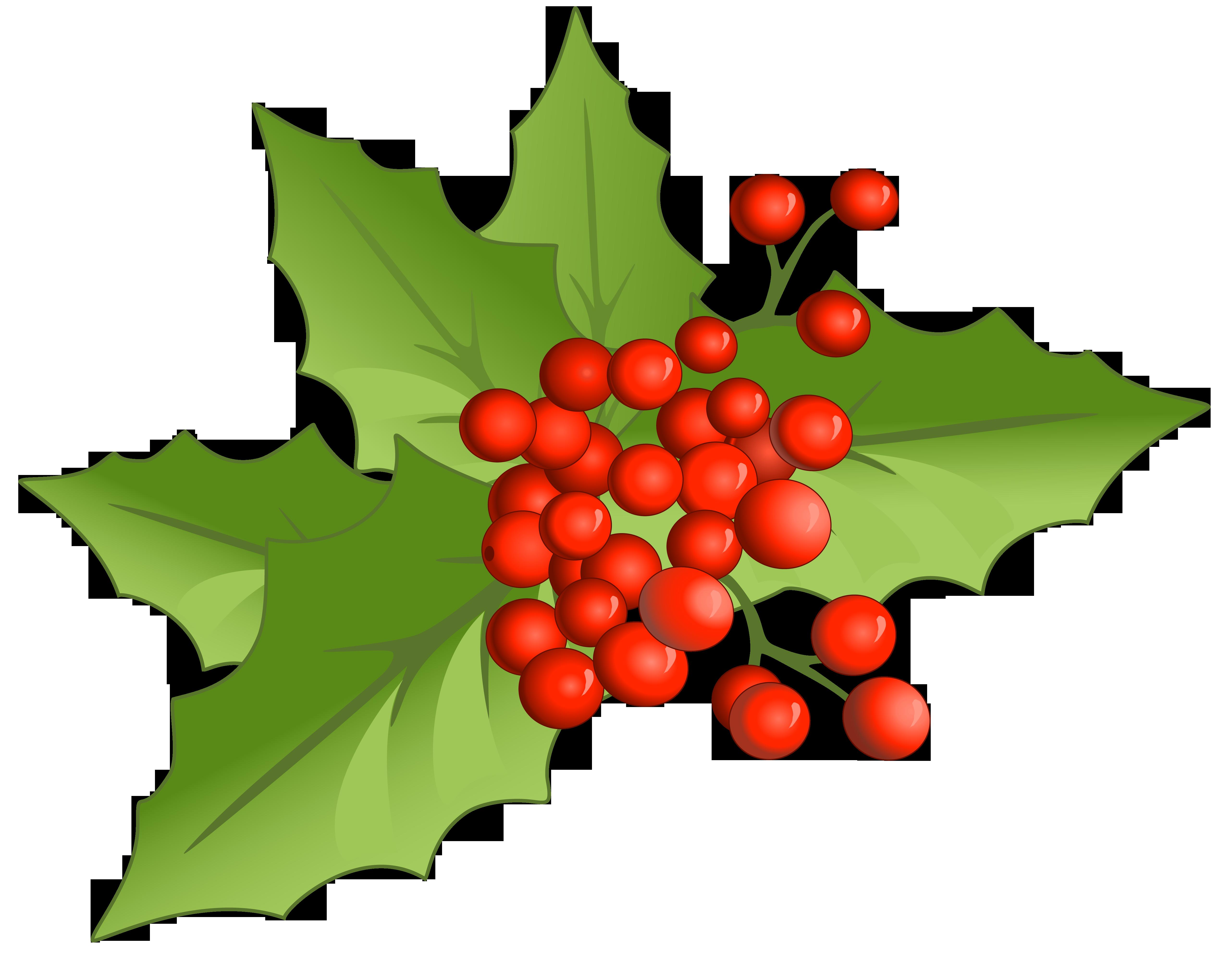 Christmas Large PNG Mistletoe Clipart.