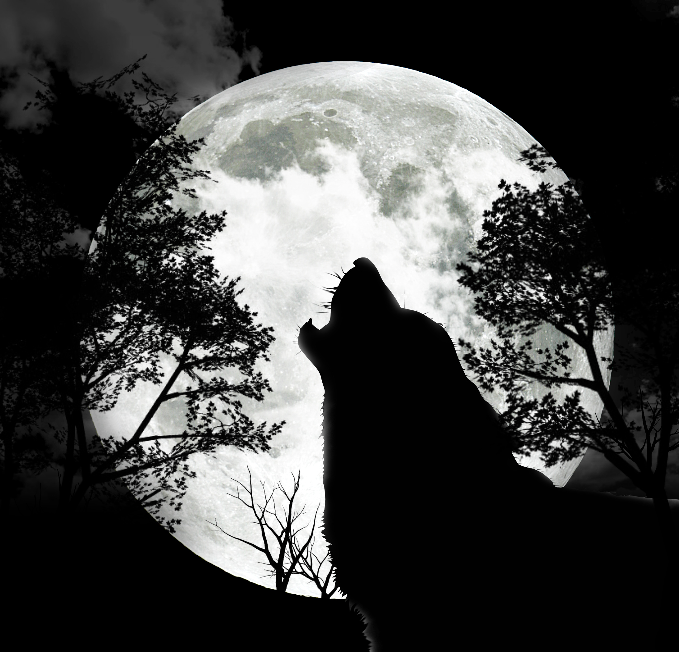 The Full Wolf Moon.