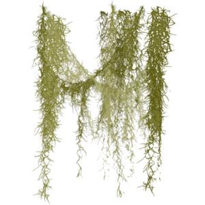 Foliage I.