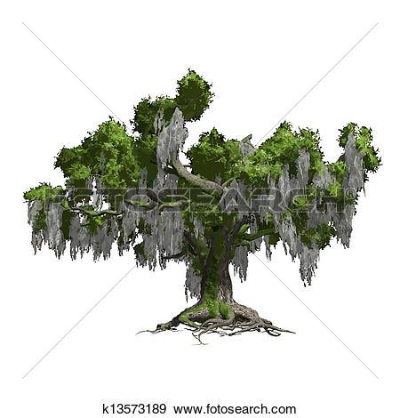 Clipart of Oak tree isolated. Vector illustration k13573192.
