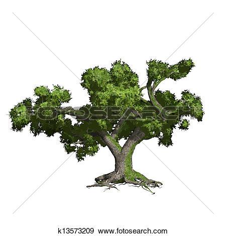 Clip Art of Big leafy tree silhouette k4578996.