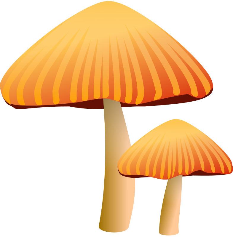 Free to Use & Public Domain Mushroom Clip Art.