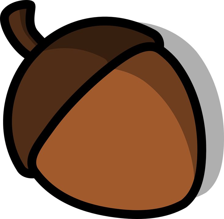 Free vector graphic: Acorn, Nut, Seed.