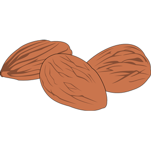 nut 02 clipart, cliparts of nut 02 free download (wmf, eps, emf.