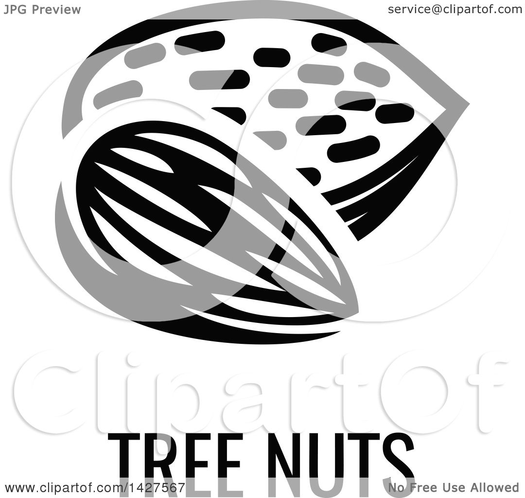 tree nuts clipart 20 free Cliparts | Download images on ...