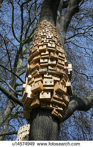 Stock Photograph of England, London, Islington. Collection of bird.
