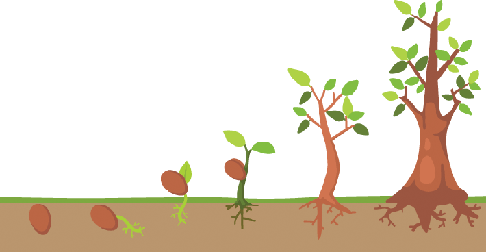 Tree Clipart Of Life.