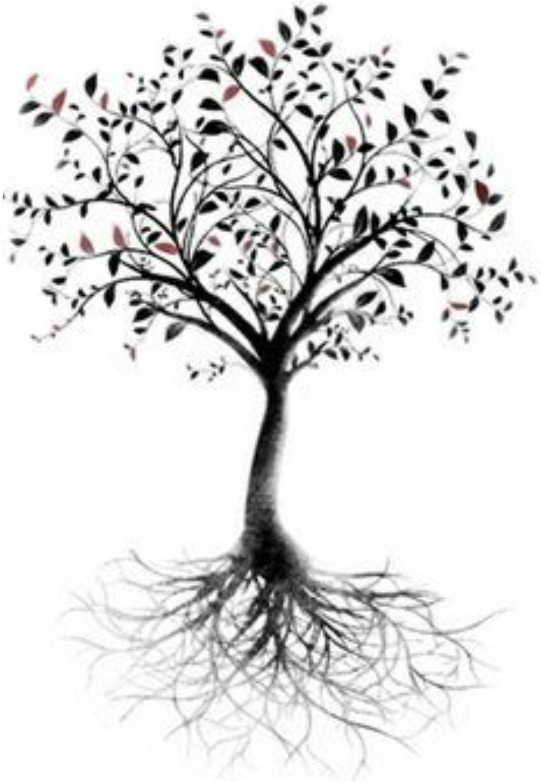 Tree of life Root Tattoo Branch.