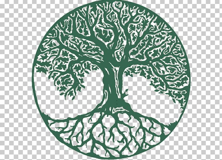 Tree Of Life Wall Decal Photography PNG, Clipart, Area, Art.