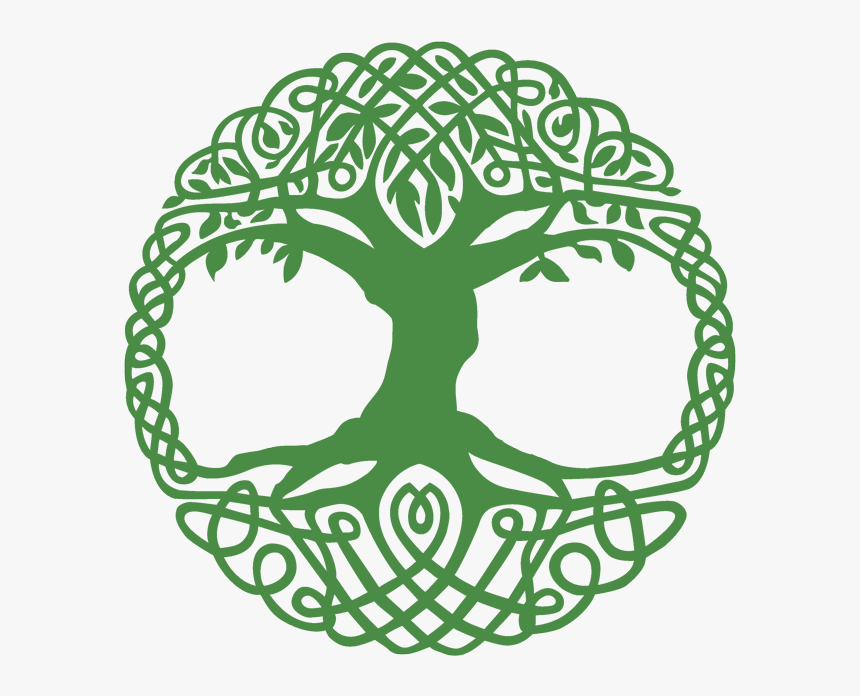 Celtic Tree Of Life Clipart , Png Download.