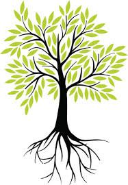 Image result for tree of life roots clipart free.