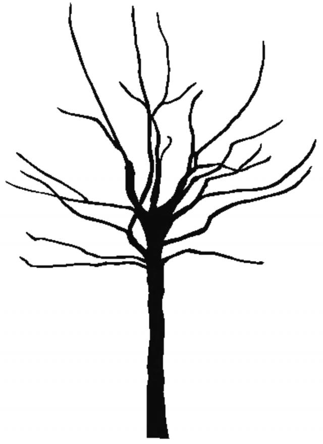 Black Tree Outline.