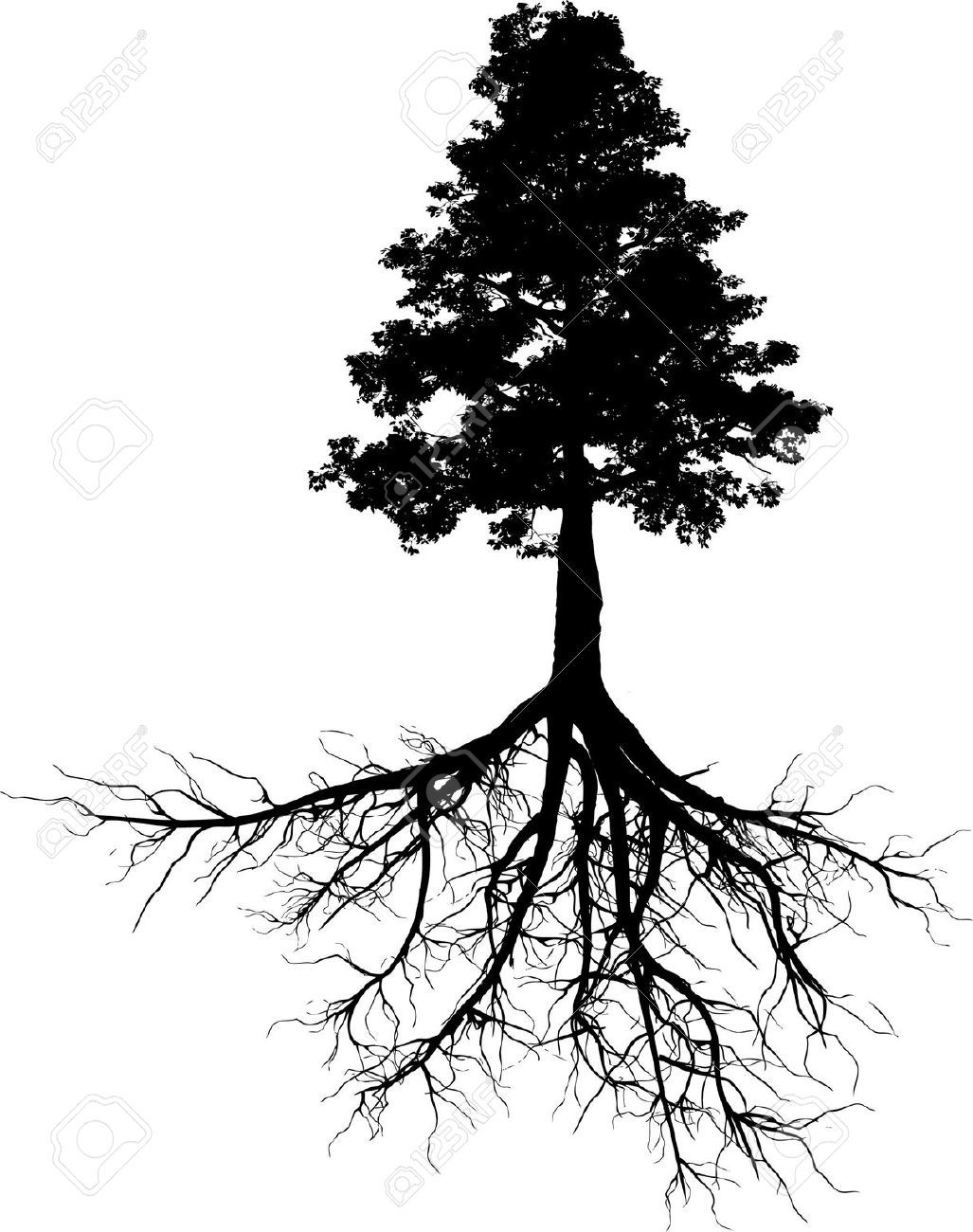 tree outline with roots.