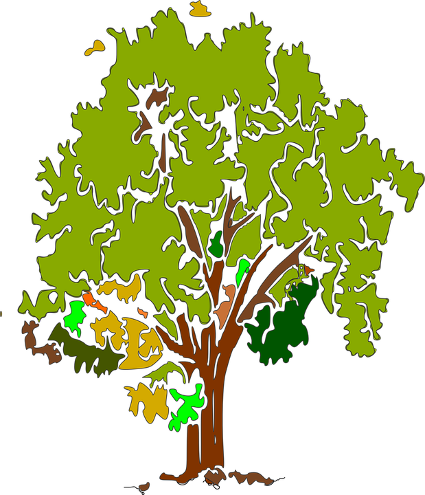 Free illustration: Tree, Green, Nature, Grass, Plant.