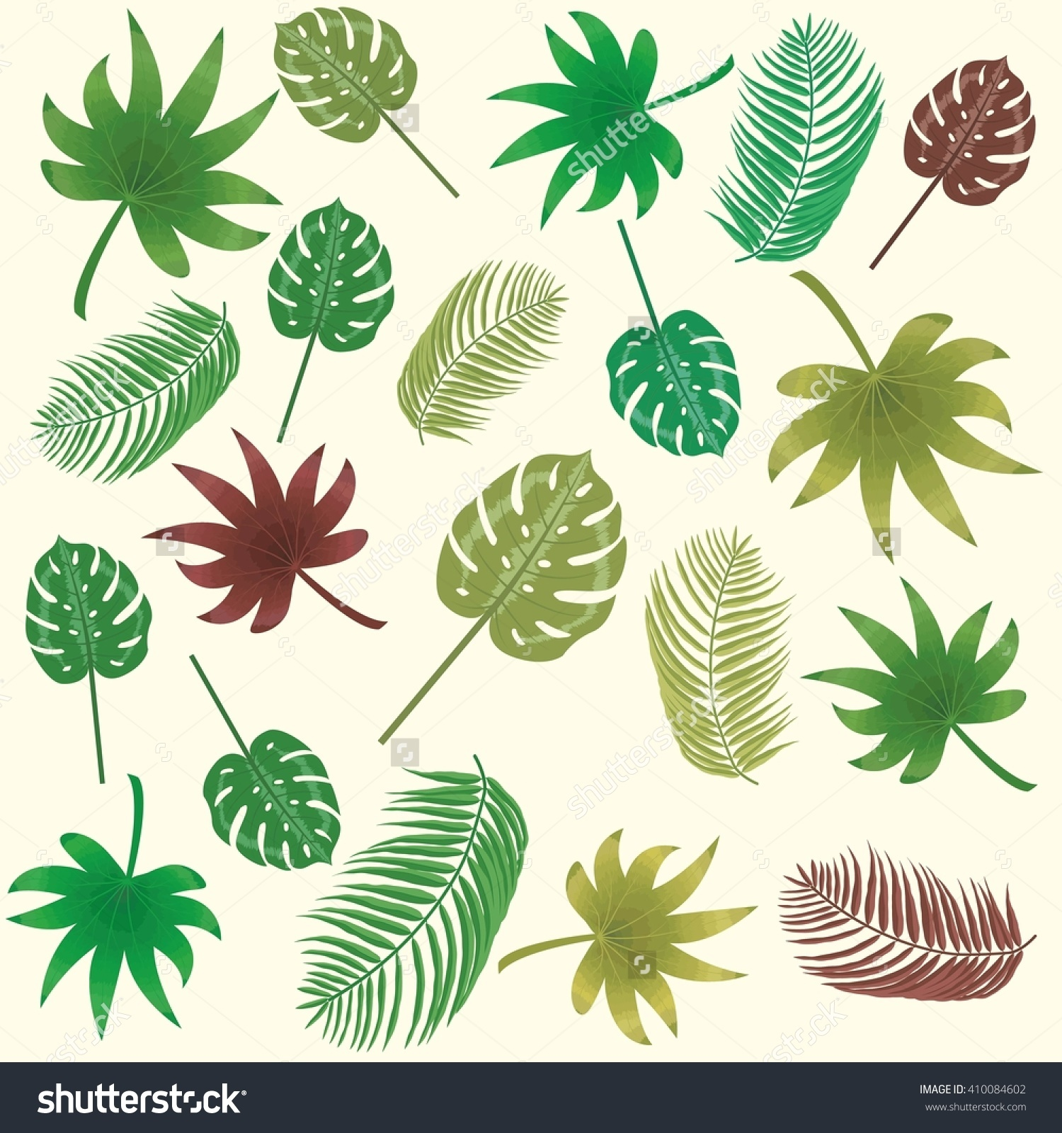 Tropical Banana Leaves Aralia Philodendron Monstera Stock Vector.