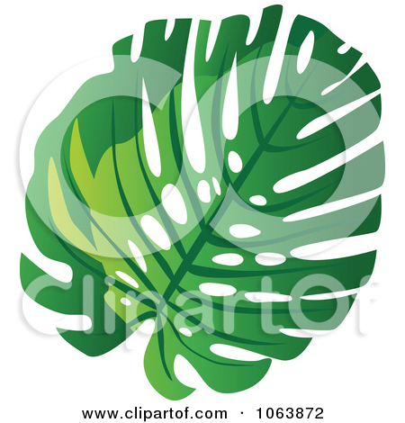 Split leaf philodendron clipart.
