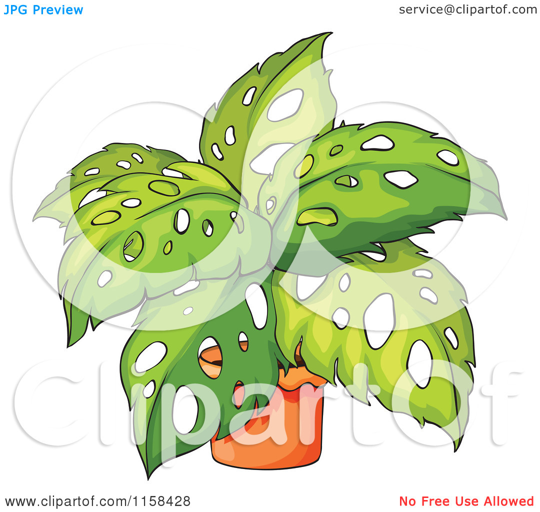 Clipart of a Potted Philodendron Plant.