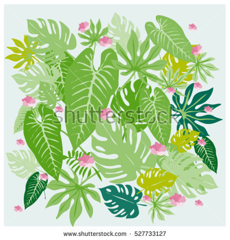 Philodendron Stock Photos, Royalty.