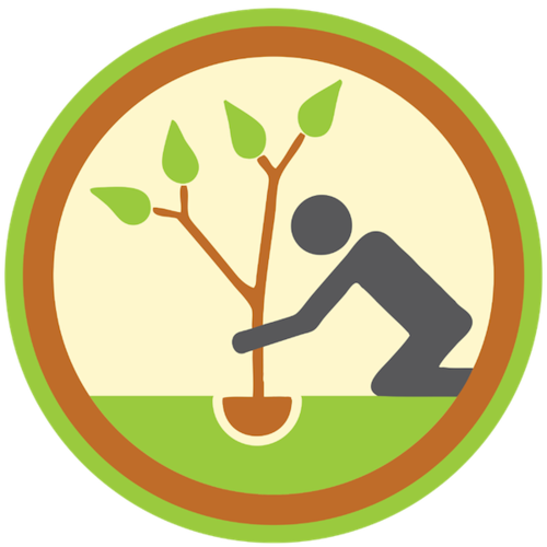 Plant a tree clipart.