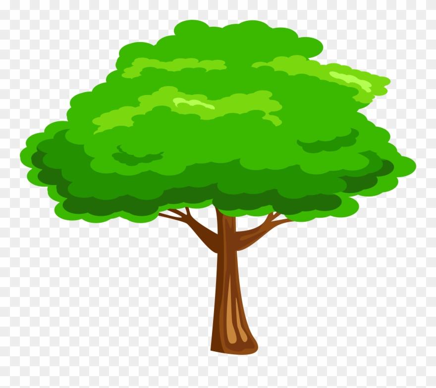 Leaves Clipart Mango Tree.