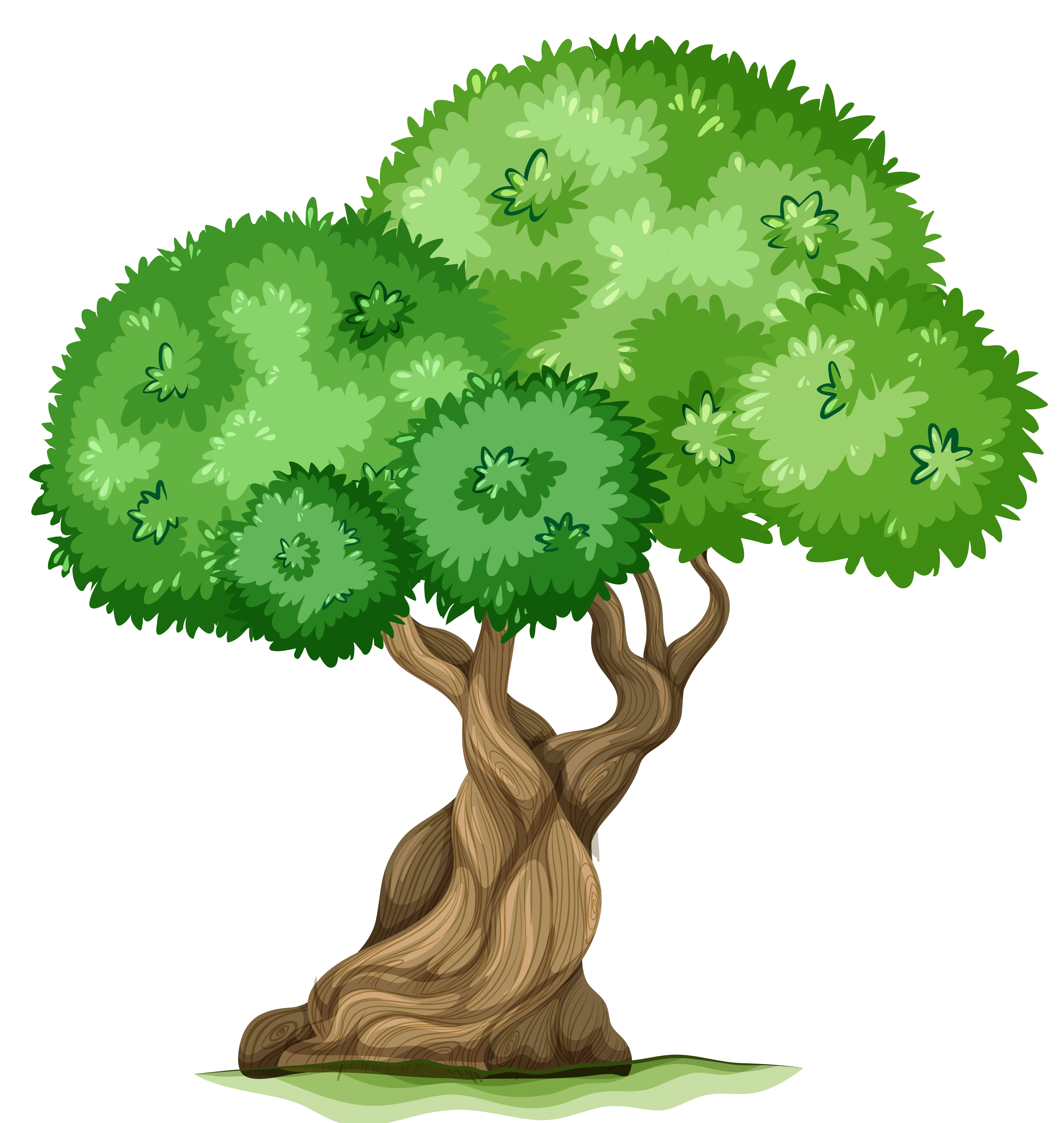 Tree PNG Clipart Picture.