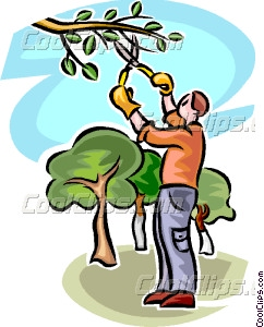 Clipart Man Pruning.