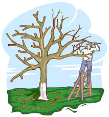 Spring tree trimming clipart.