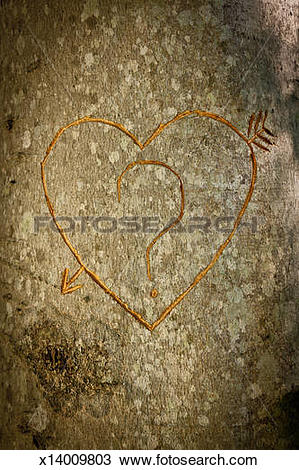 Stock Photo of Heart carved in tree with question mark x14009803.