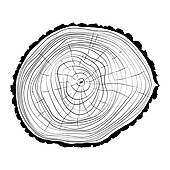 Tree ring Clipart Royalty Free. 61,388 tree ring clip art vector.
