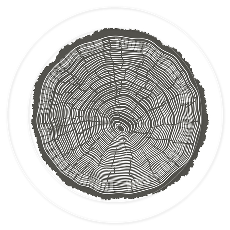 Clip Art Tree Rings.