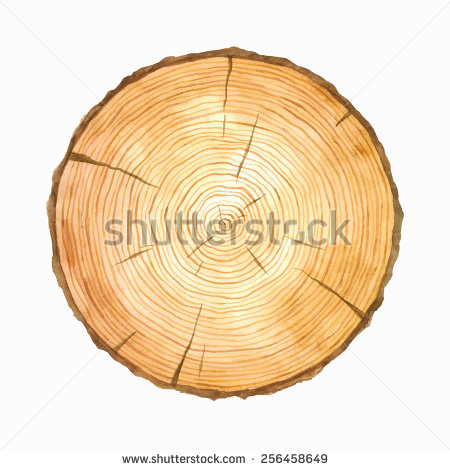 Tree rings free vector download (5,353 Free vector) for commercial.