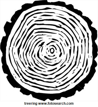 Tree Ring Clipart.