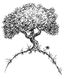 Family Tree With Roots Clipart Black And White Public Domain.