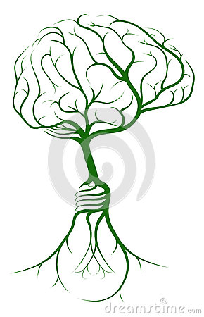 Brain Tree Lightbulb Roots Stock Vector.