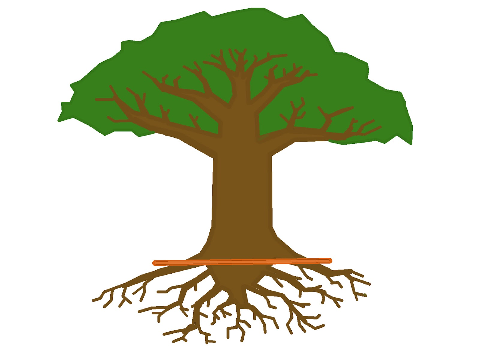 tree root clipart clipground