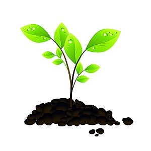 Tree seedling free clipart.