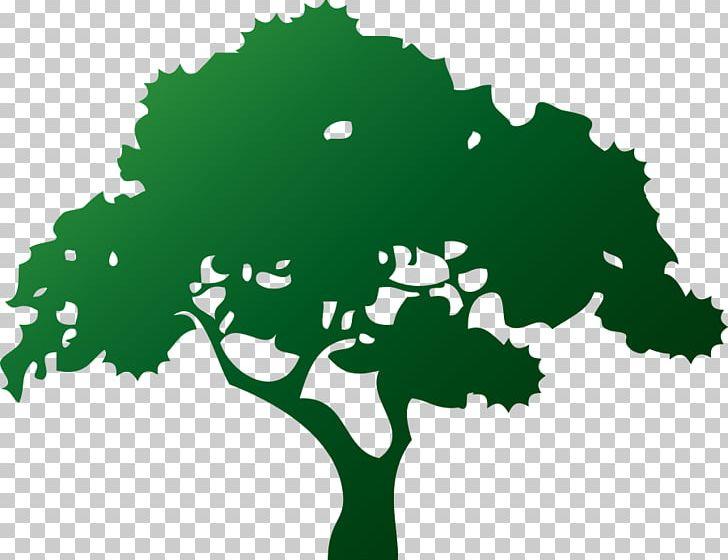 Logo Aurelio\'s Lawn & Tree Service Bonsai Arborist PNG.