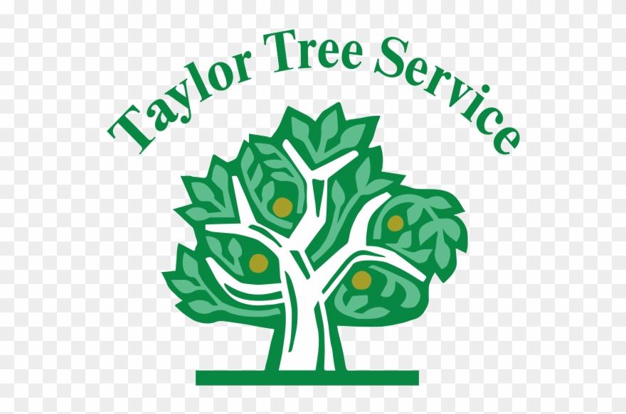 Taylor Tree Service.