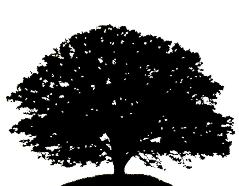 Simple tree silhouette black and white clipart.
