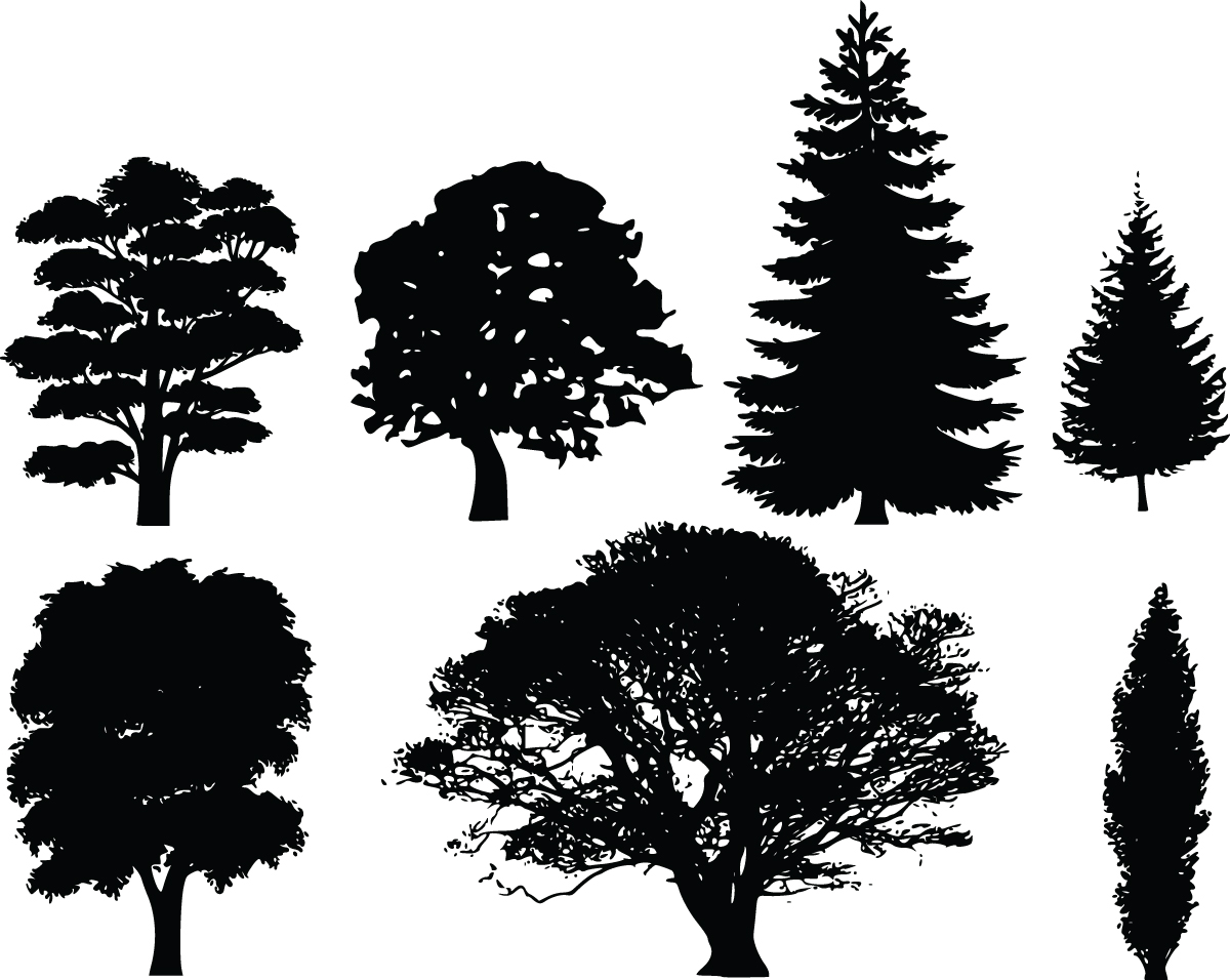 Black and white tree silhouette clipart.