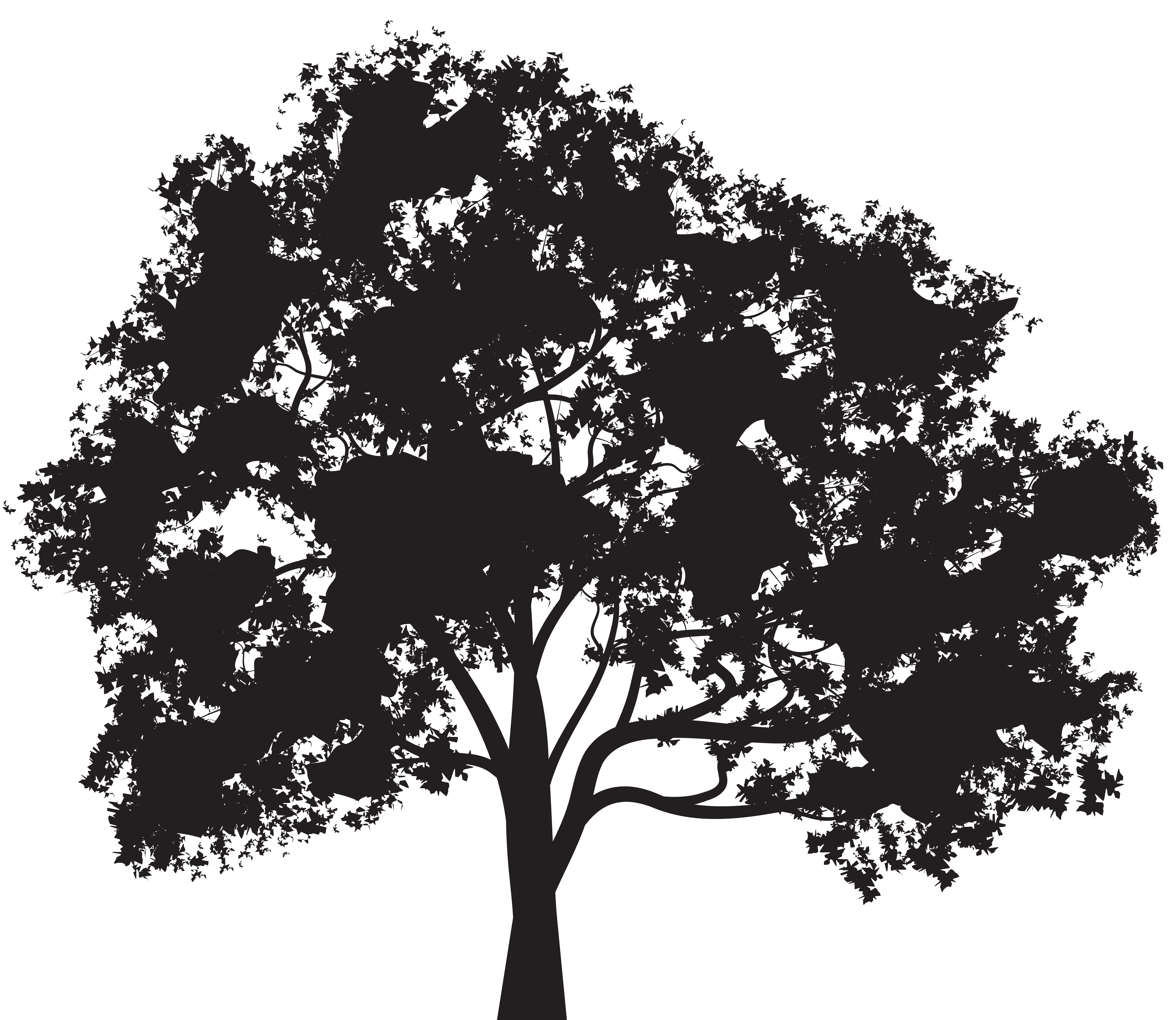 tree silhouette clipart png 20 free Cliparts | Download ...