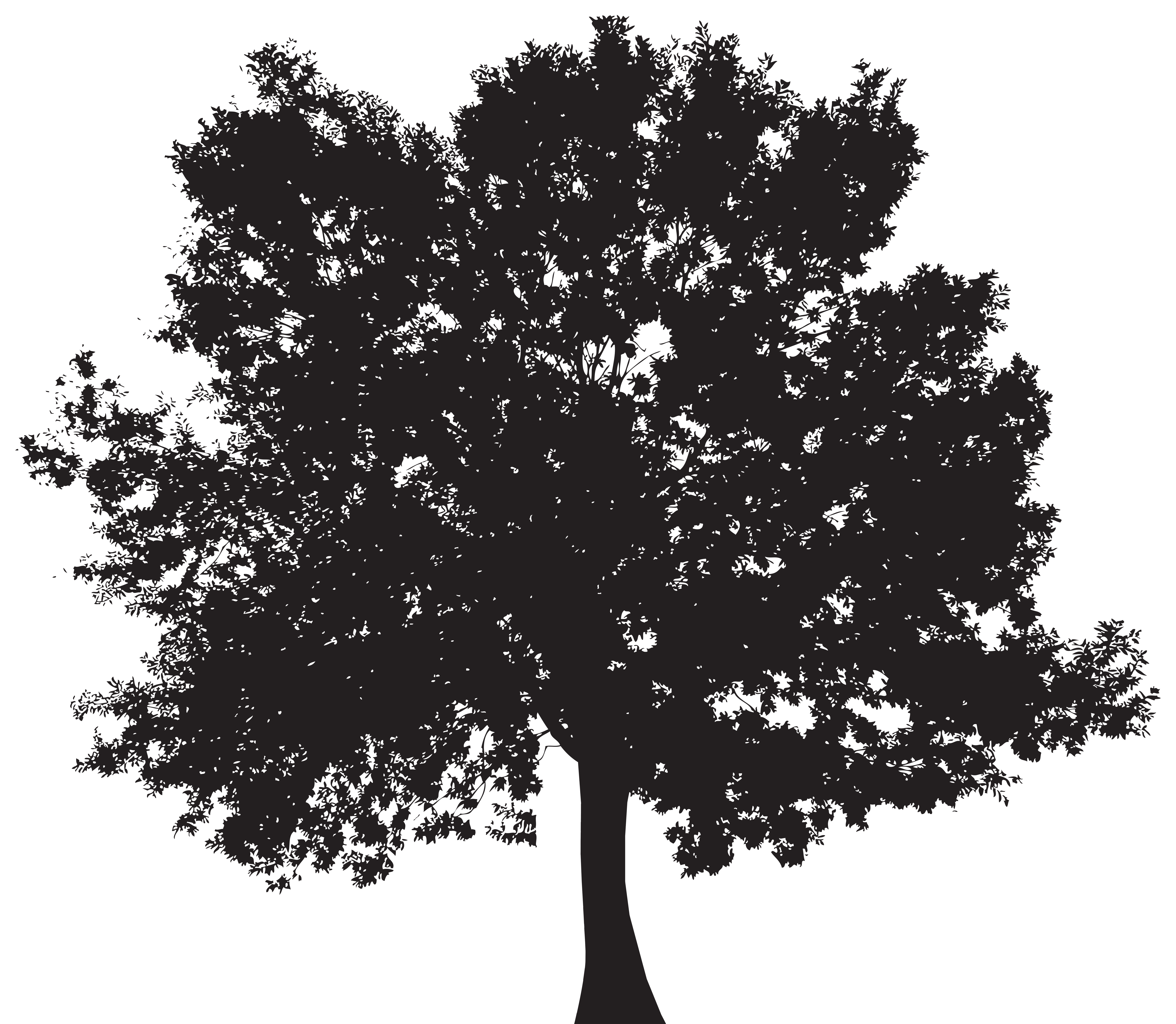 Tree Silhouette PNG Clip Art.