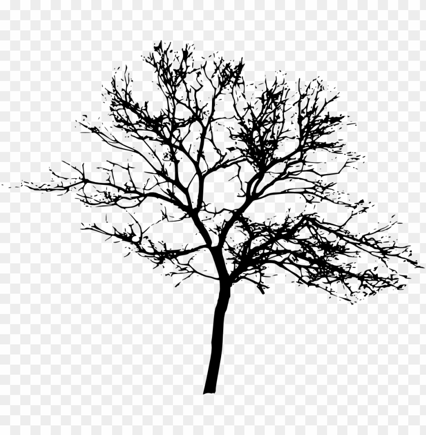 Download Free png tree silhouette png Free PNG Images.