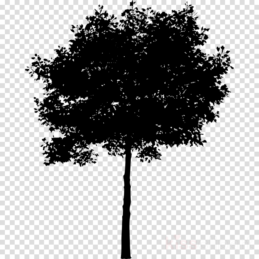 Oak Tree Silhouette clipart.